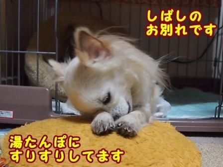 blog8882a.jpg