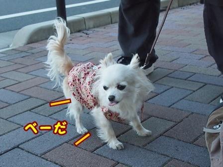 blog8918a.jpg