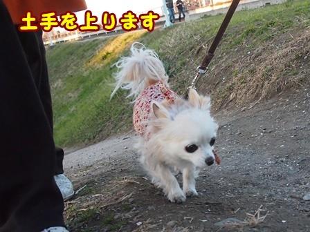 blog8933a.jpg