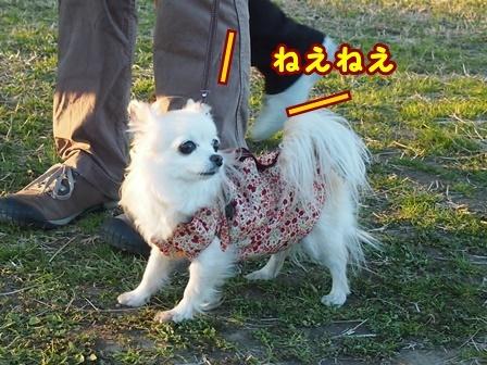 blog8939a.jpg
