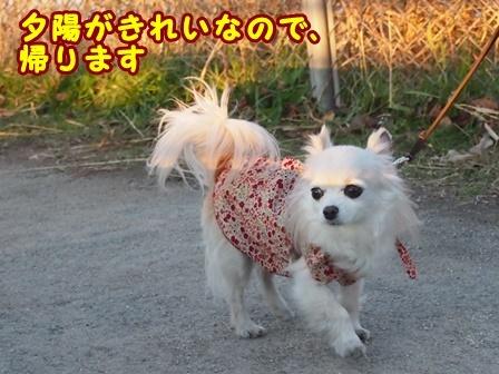 blog8946a.jpg