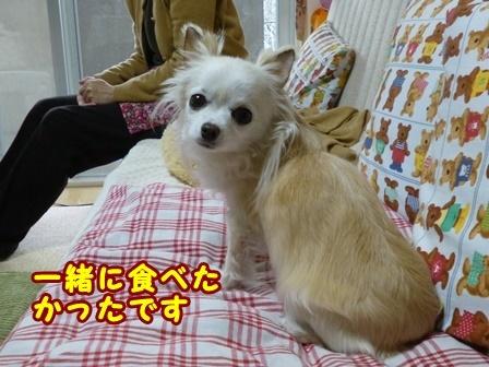 blog8981a.jpg