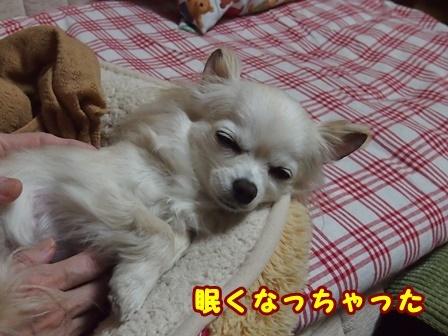blog8988a.jpg