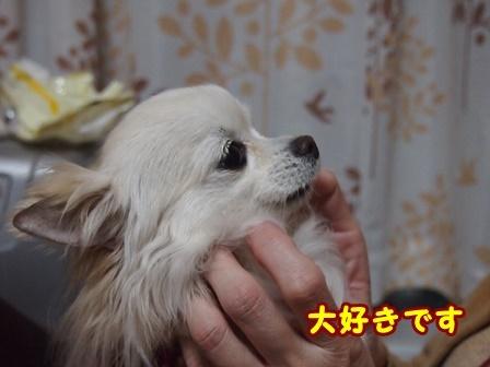 blog9072a.jpg