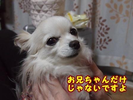 blog9074a.jpg