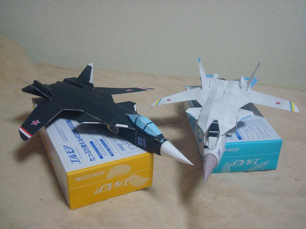 Su-47_compare1.jpg