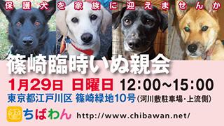 event-170129-shinozakirinji_banner_02.jpg