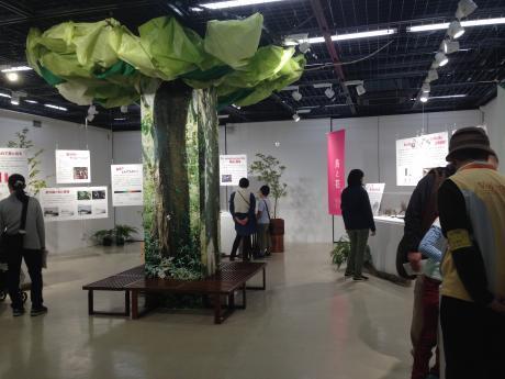 筑波実験植物園・研修展示室