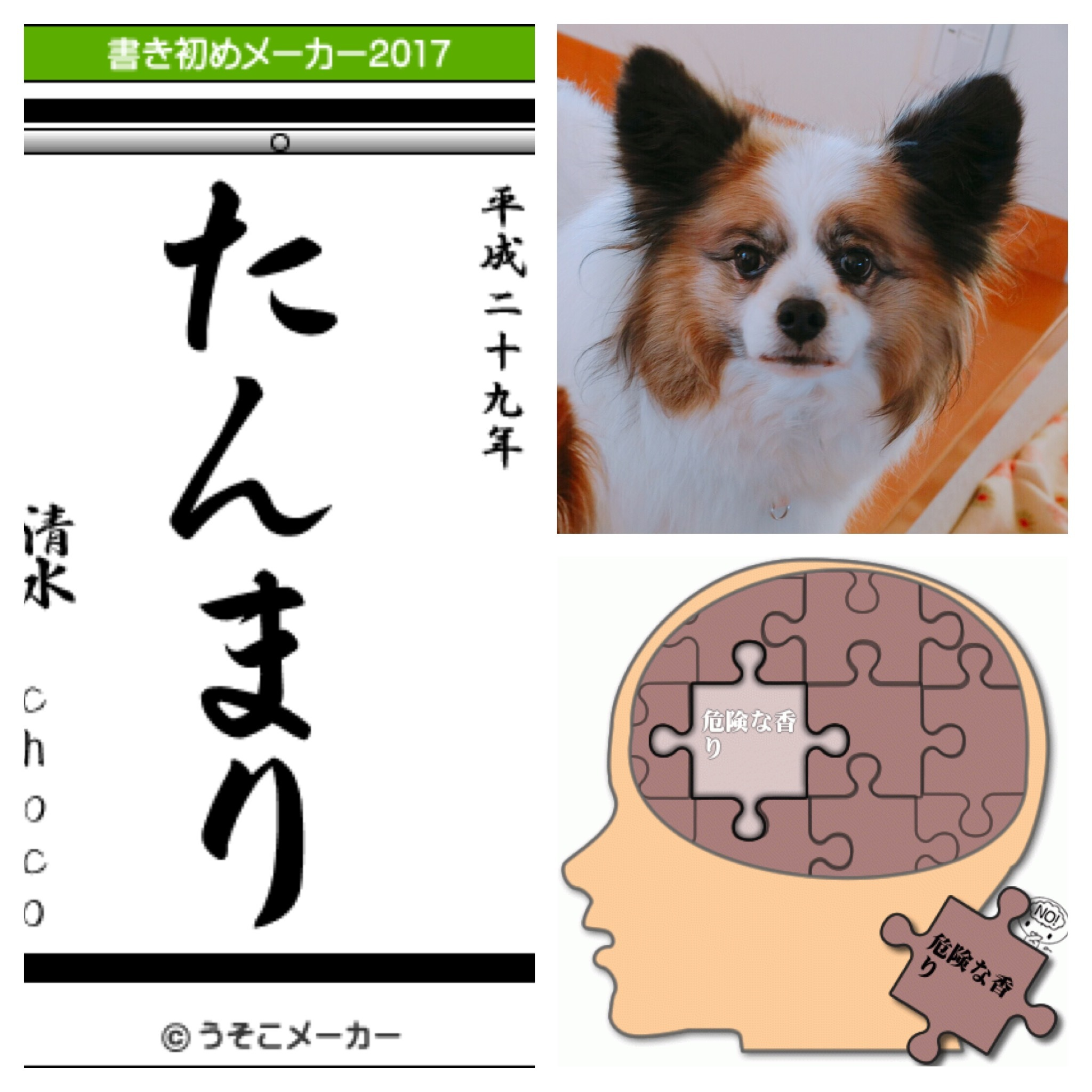 写真 2017-01-03 12 54 56