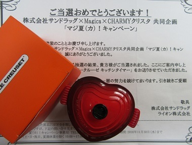 20161110 (7)