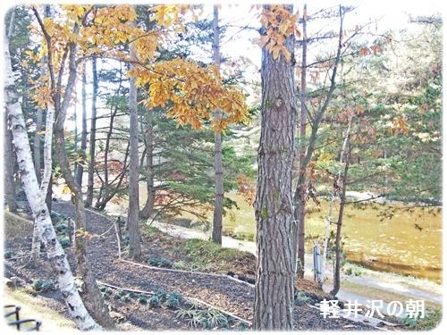 レジーナ軽井沢庭からの景色