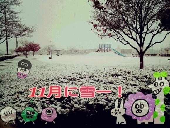 11月なのに雪