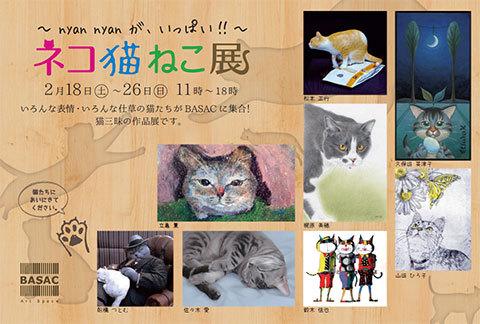 201701_cat.jpg