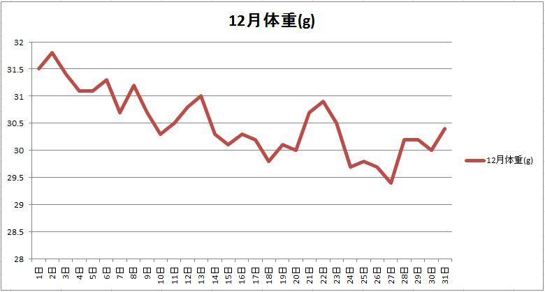 12月の体重