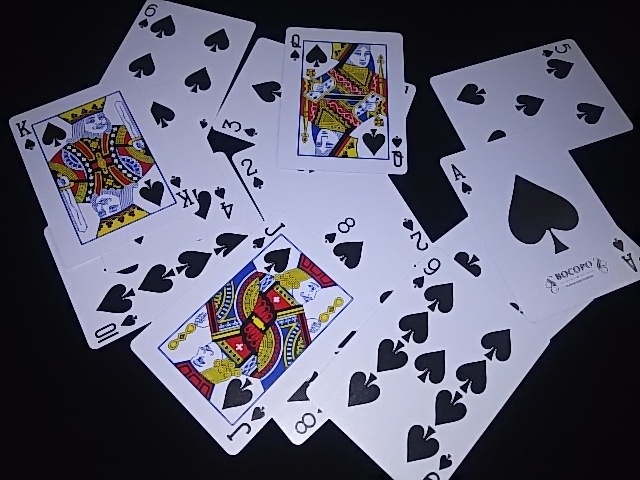Magician Limited Deck Black (7)