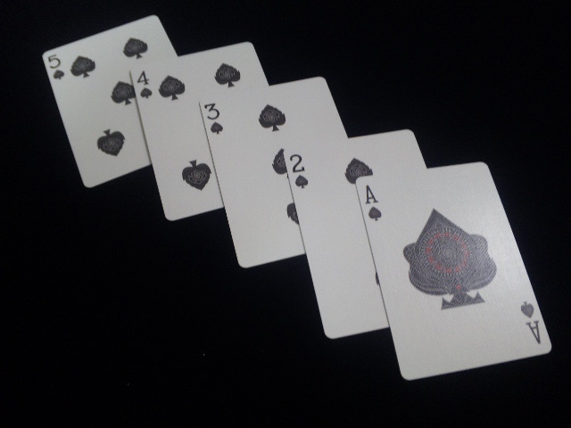 Black Rose Playing Cards (BICYCLE) (6)