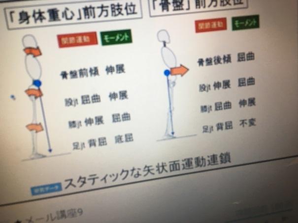 むち打ち 前橋 (7)