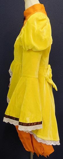 金糸雀 (2)