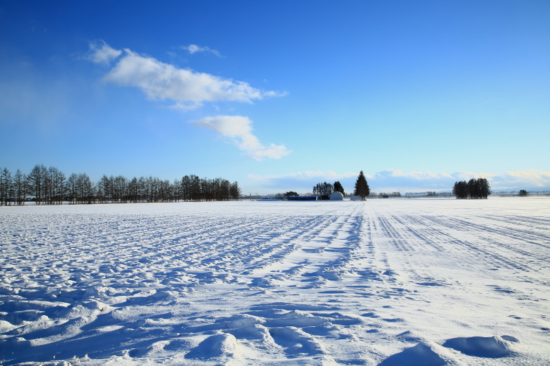 030 冬景色0001