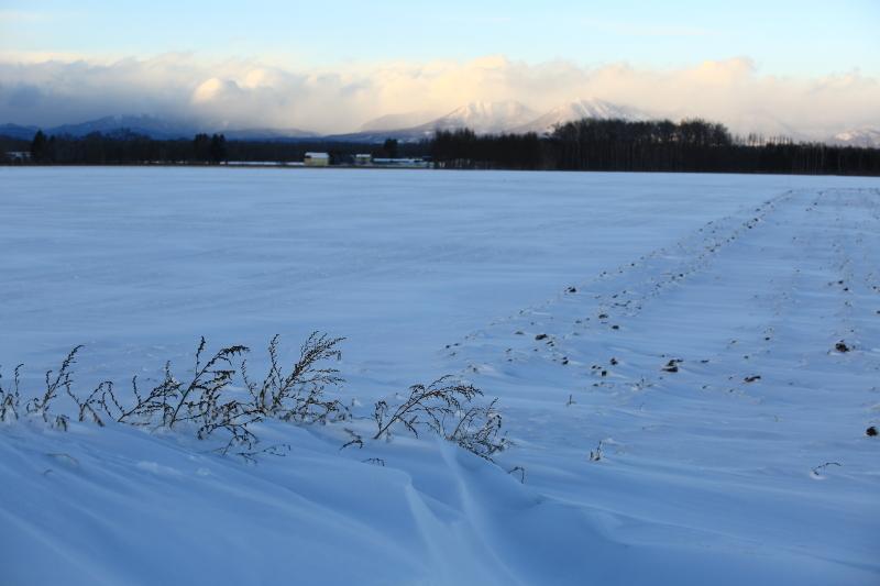 057 冬景色0001