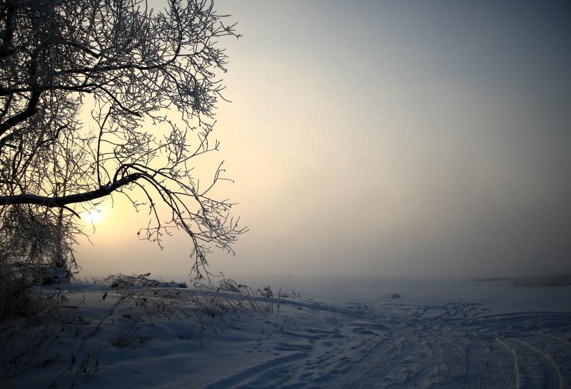 210 濃霧から日の出0001
