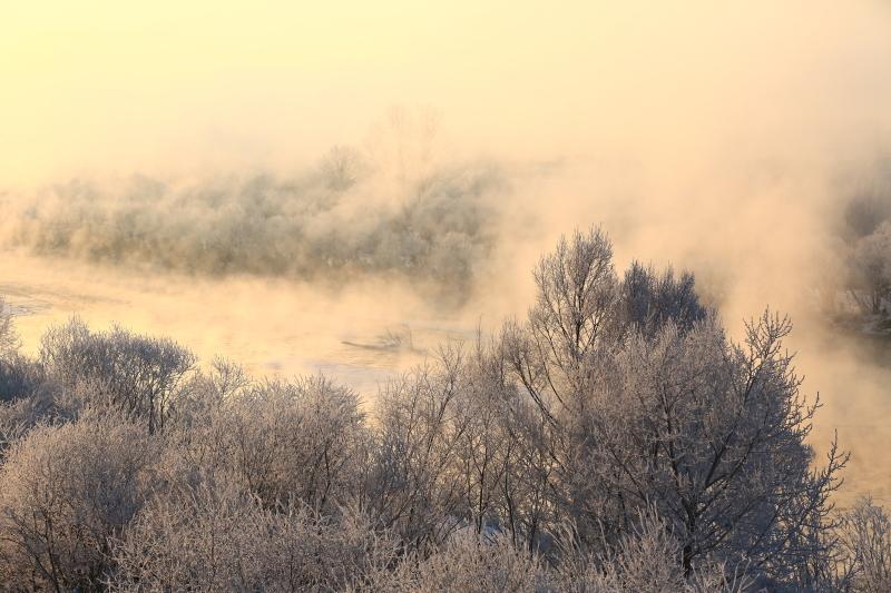 147 霧氷とけ嵐0001