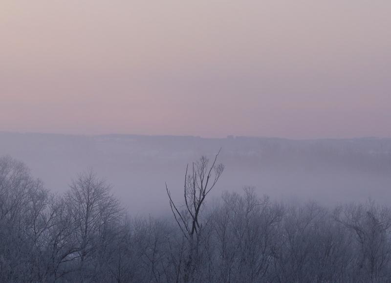 042 毛嵐と霧氷0001