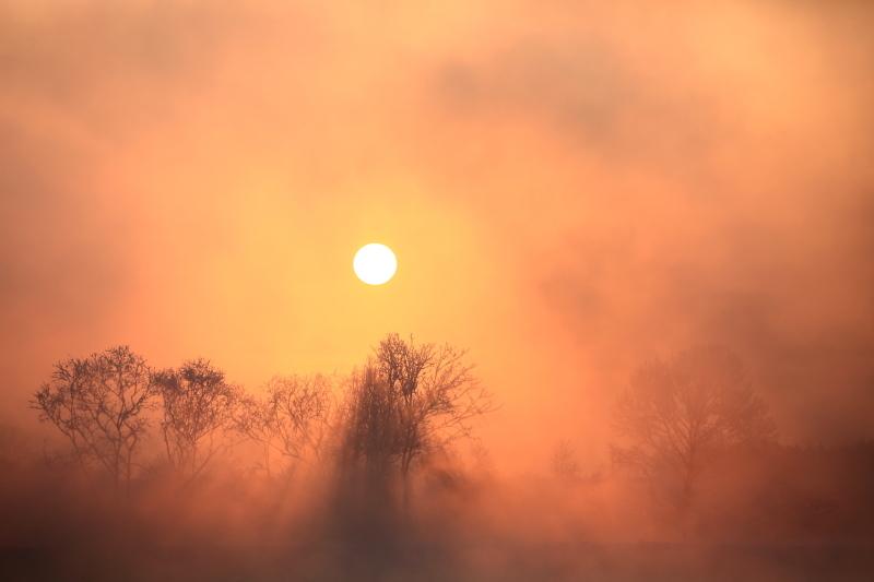 102 川原で見た太陽0001