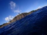 1伊豆海洋公園 (3)