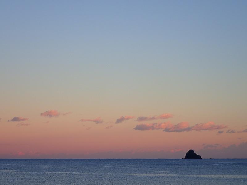 伊豆海洋公園 (41)