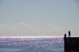 10勝浦海春の風景 (2)