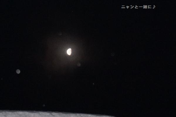 yukitotuki118.jpg