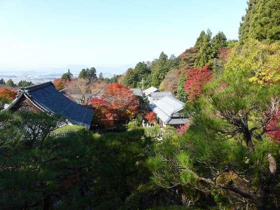「遠望台」より眺める百済寺の本坊庭園