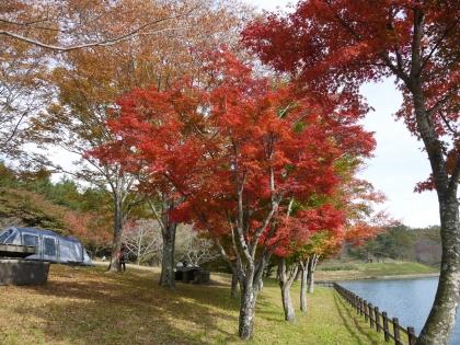 志高湖(3)