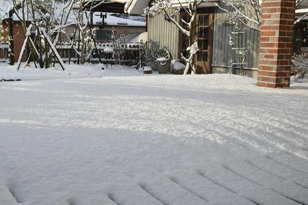 170115雪の朝 (2)