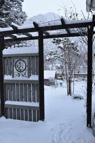 170115雪の朝 (3)