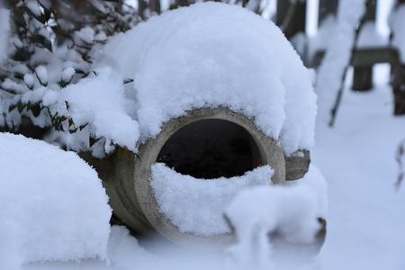 170115雪の朝 (9)
