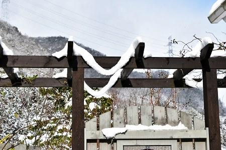 170115雪のなごり (2)