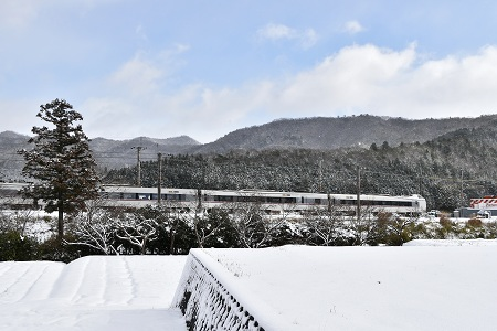 170115雪のなごり (8)