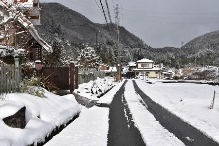 170115雪のなごり (10)