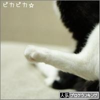 dai20161114_banner.jpg