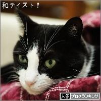 dai20161124_banner.jpg