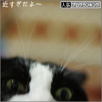 dai20161128_banner.jpg