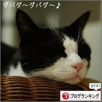 dai20161202_banner.jpg