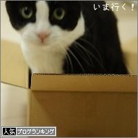 dai20161207_banner.jpg