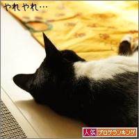 dai20161212_banner.jpg
