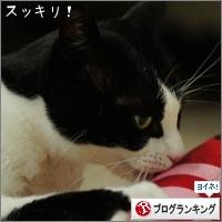 dai20161213_banner.jpg