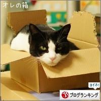 dai20161220_banner.jpg