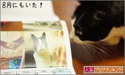 dai20161227_banner.jpg
