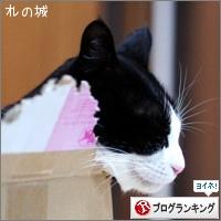 dai20170116_banner.jpg